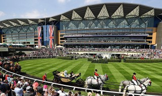 Royal Ascot 2021 Betting Odds Comparison & Tips